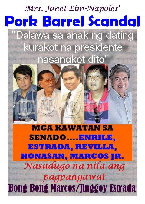 Four senators (Bong Revilla, Juan Ponce Enrile, Jinggoy Estrada and Gringo Honasan) gave Napoles Fake NGOs PHP 1 Billion says COA report.