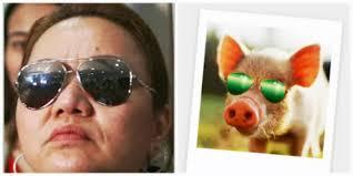janet pig sunglasses